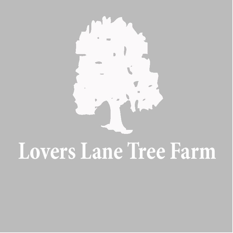 LoversLane-circle